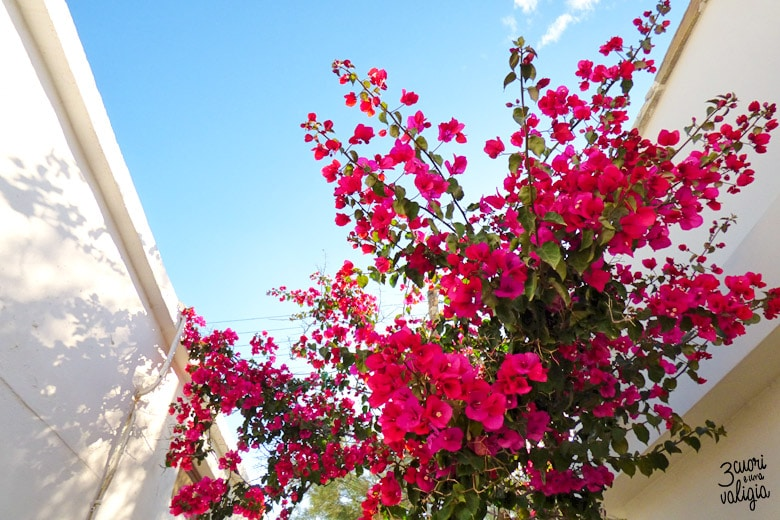 particolari in Naxos