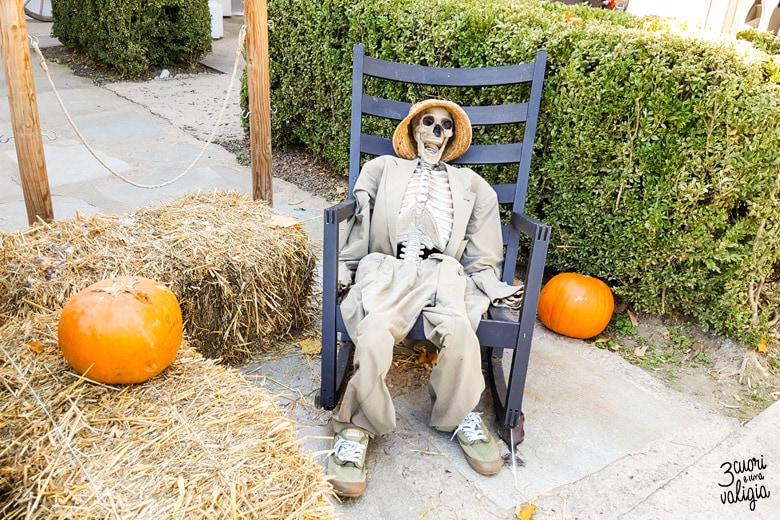 Bioparco Zoom Torino Halloween con bambini scheletro