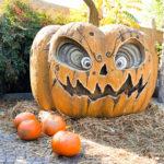 Bioparco Zoom halloween