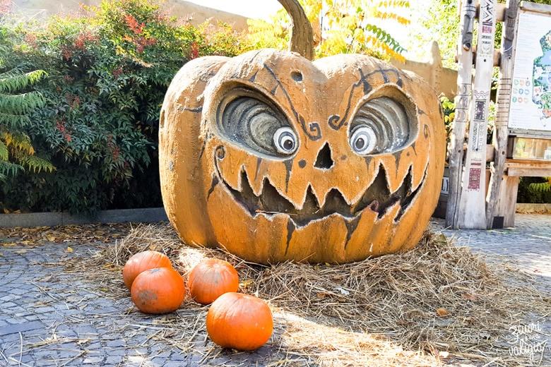Bioparco Zoom Torino halloween con bambini