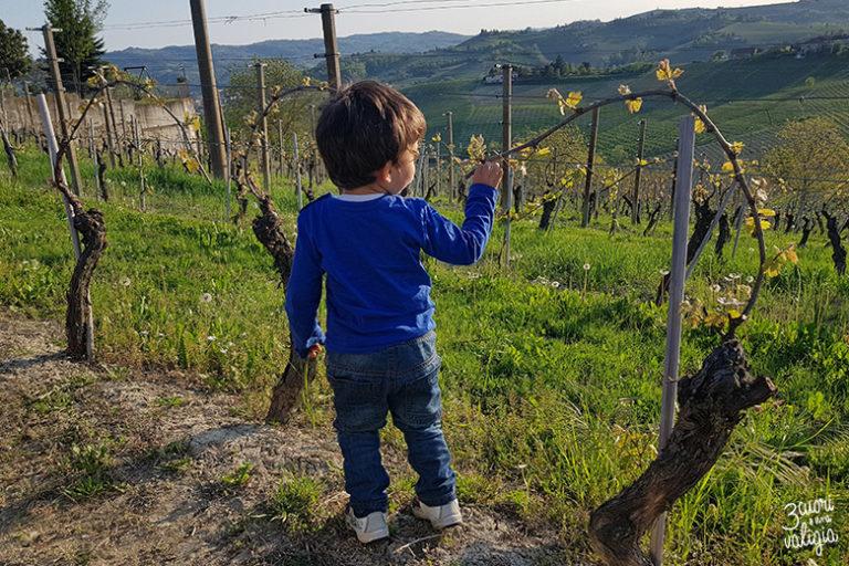 Itinerario tra le colline del Monferrato con i bambini