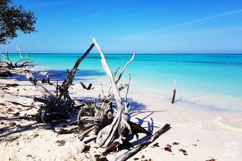 Cuba - Cayo Jutías spiaggia caraibica