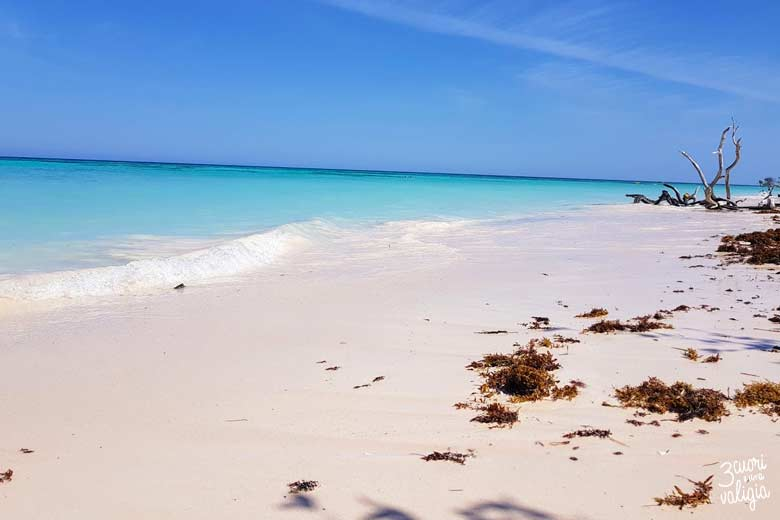 Cuba - Cayo Jutías, spiaggia bianca