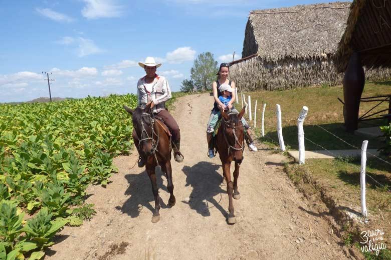 Cuba - Valle Viñales, gita a cavallo