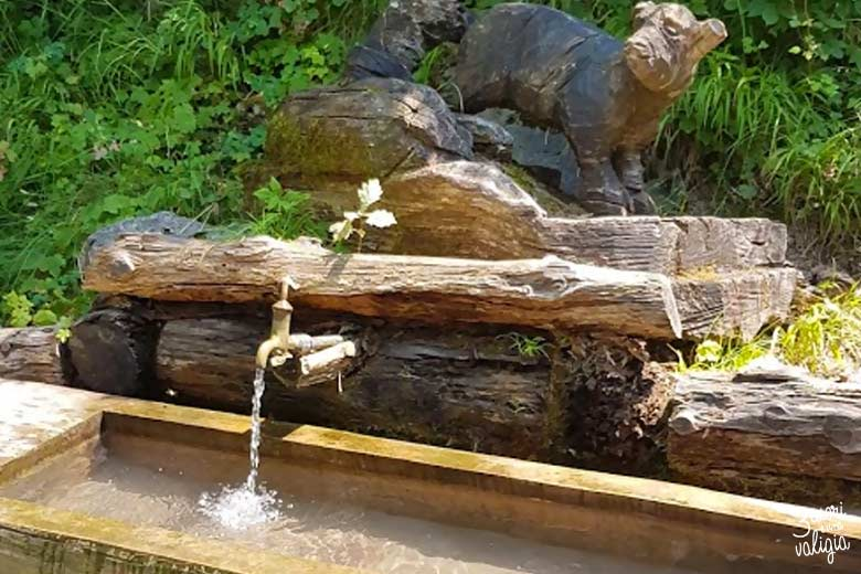 Svizzera - Heidiland alpe dell'Ochsenberg fontana