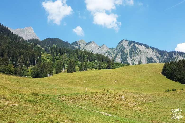Svizzera - alpe dell'Ochsenberg prati e montagne