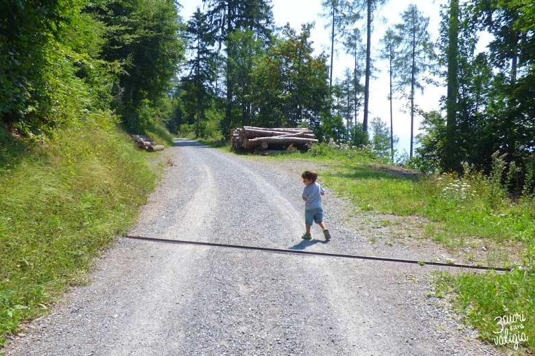 Svizzera - salita all'alpe dell'Ochsenberg