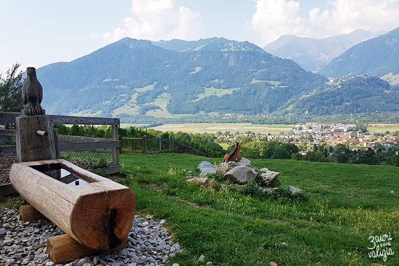 Svizzera - Maienfeld Heididorf casa di Heidi caprette