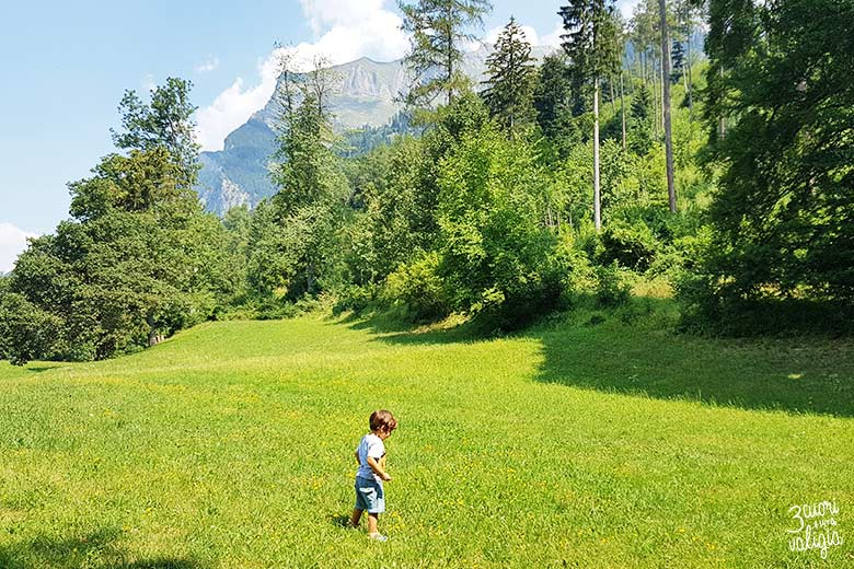 Svizzera - Maienfeld Heididorf prati