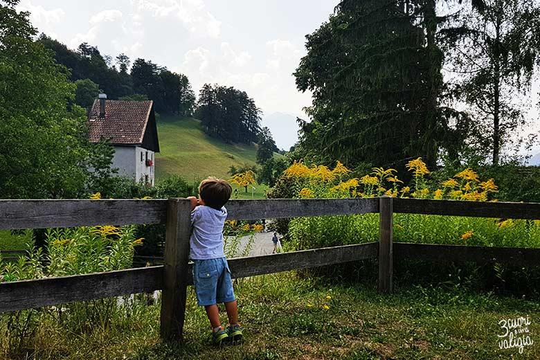Svizzera - Maienfeld Heididorf steccato e fiori