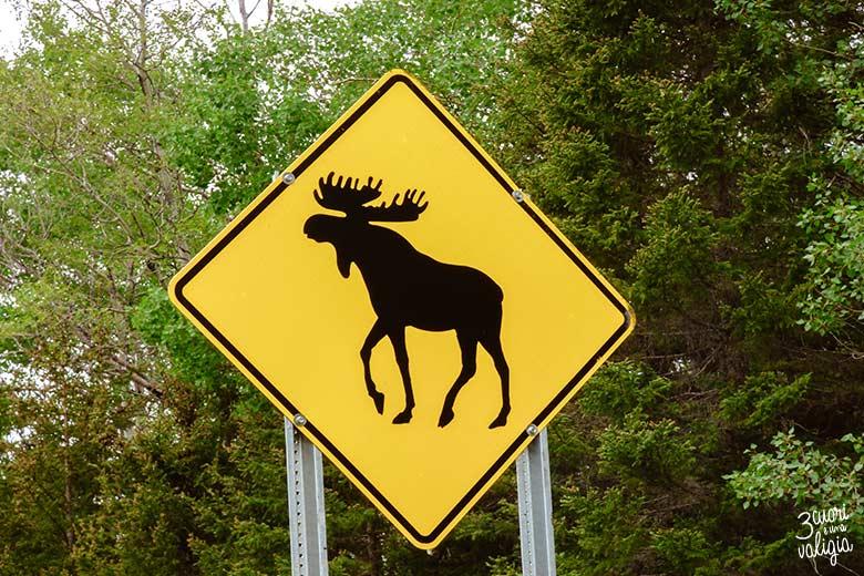 Canada orientale con bambini - cartello stradale
