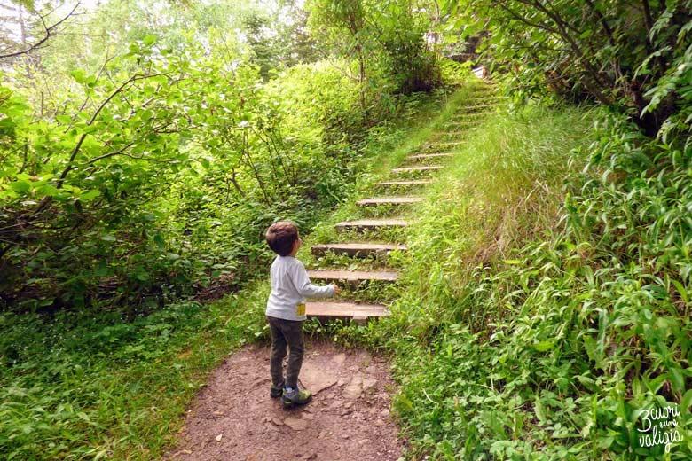 Itinerario Canada orientale con bambini Forillon National Park