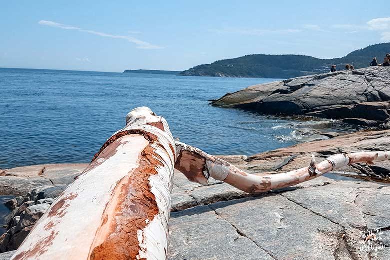 Itinerario Canada orientale con bambini Tadoussac Islet Point