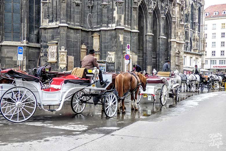 Vienna con bambini carrozze