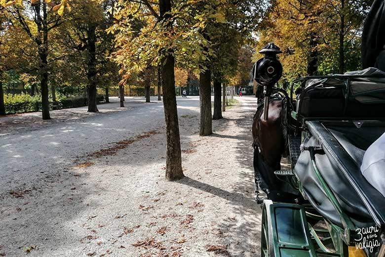 Schönbrunn in carrozza