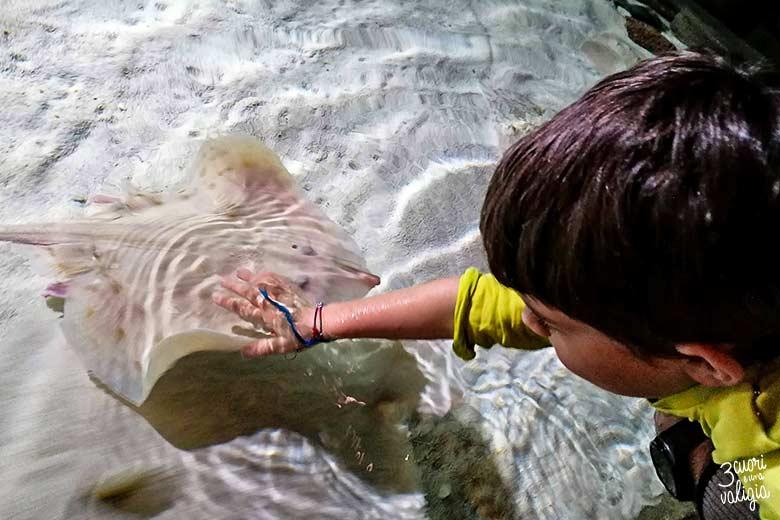 Acquario di Genova con i bambini